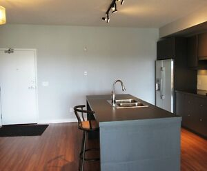 EXECUTIVE TWO BEDROOM CONDO FOR RENT- JAN 1
