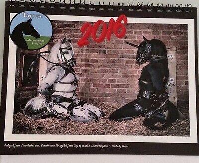 Equus International Pony Play Calendar 2016