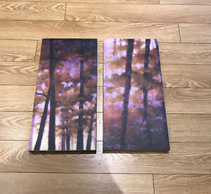 Canvas painting for sale Peterborough Peterborough Area image 1