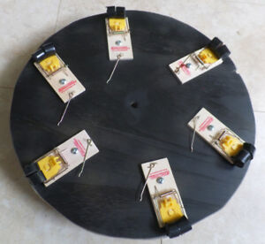 Mousetrap Roulette - With Real Mousetraps!