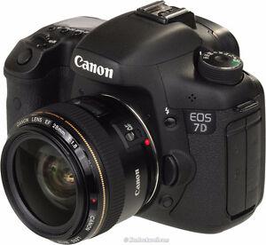 Canon EOS 7D Mark I 40mm