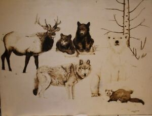 Canadá animal woodburning pyrography
