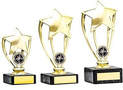 Multi Sport Trophies Gold Star Achievement School Awards 3 sizes FREE Engraving - Gold Star Trophies
