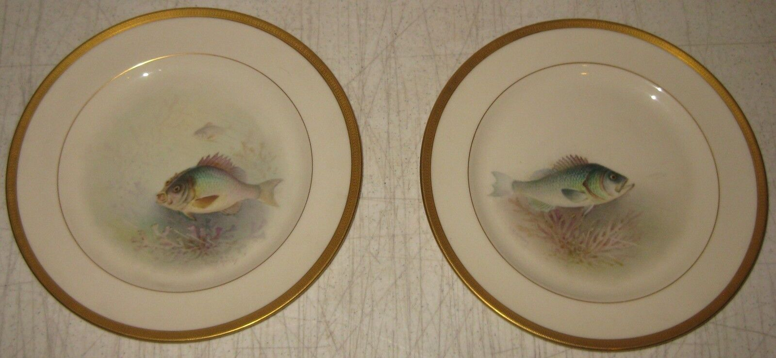 2 Antique LENOX WILLIAM H MORLEY Painted Fish CABINET Plates  SEA BASS  PORGY
