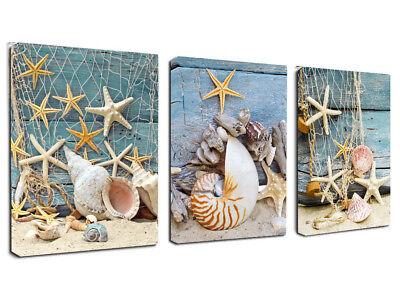 Framed 3 Panels Starfish Seashells Canvas Wall Art Painting Picture Home Decor - Starfish Wall Art