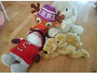 various cuddly toys