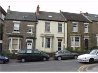 Furnished, 4 double-bedroom house to let in Broomhill, Sheffield