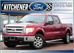 2014 Ford F-150 4WD/ADJ PEDALS/SIRIUS/CAMERA/RMT START/PWR GROUP