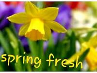 Spring fresh cleaning services