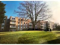 Lovely furnished modern two double bedroom flat in Meyrick Park