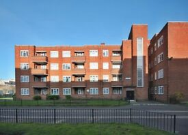 SPACIOUS ONE BEDROOM FLAT AVAILABLE FOR RENT