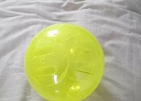Large Hamster Exercise Ball