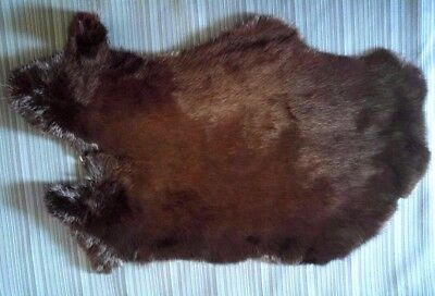 Rabbit Pelt - Genuine Dyed Leather Fur - Black / Brown for sale  San Bernardino