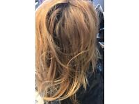 Hair Model required for West End Salon, Highlights for £25.