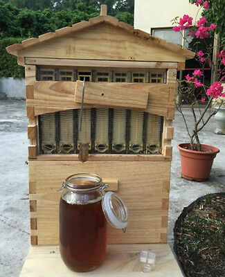 7pcs Upgraded Beekeeping Tool Hive Frames Beehive Wooden Brood Box