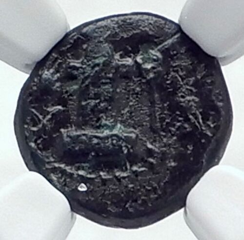 Sestos In Thrace Authentic Ancient Very Rare 300bc Greek Coin W Herm Ngc I81127