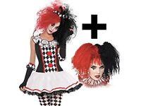 Halloween Harlequin dress + wig