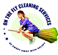 On The Fly - Cleaning Services