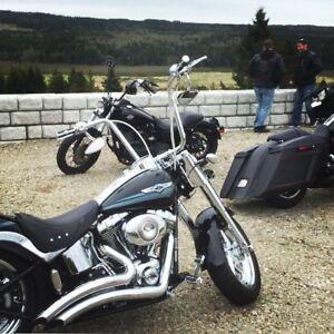 2008 Harley Fat boy Softtail