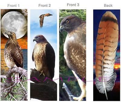 3 RED TAILED HAWK BOOKMARK Tail Feather Bird Animal Book Mark ART CARD Figurine