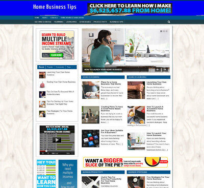Home Business Tips Store Website With Affiliates - Free Domain - Pro Design