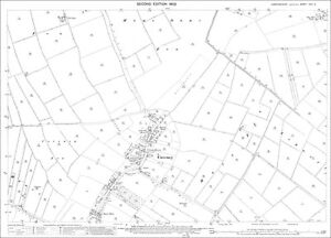 Coveney-Cambridgeshire-in-1902-old-Ordnance-Survey-map-25-8