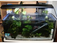 Fish Tank 32L Aqua One Trio