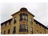 Bright & airy top floor 1 bedroom flat