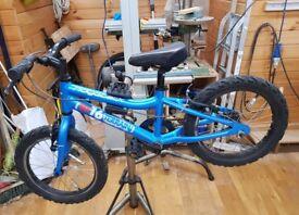 Ridgeback MX16 Terrain Childs Bike