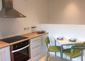 1 bedroom flat in William Street, Reading, RG1 (1 bed) (#1219900)