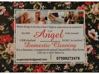 Angel Cleaning Service - All cleaning products and Equipment provided - Non agency - Est. 2002