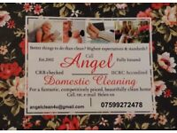 Domestic Cleaning. All products provided. Competitively priced.