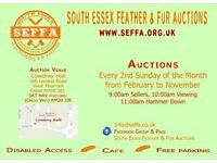 South Essex Feather & Fur Aid 12-03-2017-RM20 3JE-ESSEX