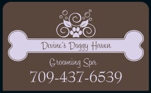 Devine's Doggy Haven Grooming Spa