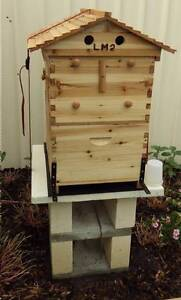 Free flow Beehive Gosnells Gosnells Area Preview