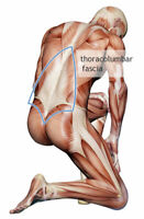FREE 30 MIN FASCIAL STRETCH THERAPY (FEMALES ONLY)