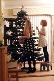 Christmas Tree - Artificial - Used