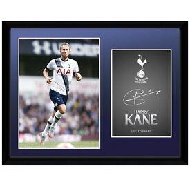 Harry Kane frame