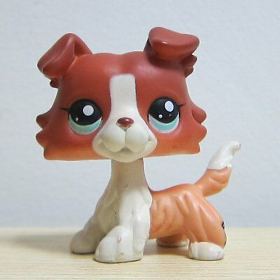 Littlest Pet Shop Brown Collie Dog Puppy Blue Eyes Figure LPS Rare Toy #1542
