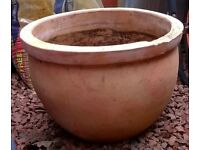 Large round terracotta plant pot