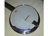 Guitar/banjo superb condition with gig bag