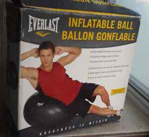 Everlast Inflateable exercise ball