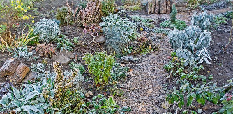 Damit Blumenbeete den Frost überstehen, sollten sie mit Laub oder Vlies abgedeckt werden. (Foto: Thinkstock)
