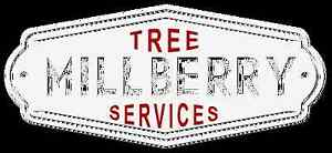Millberry Tree services Kincumber Gosford Area Preview