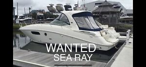 Wanted: WANTED SEARAY SUNDANCER APPROX 11m long Private Buyer