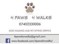 DOG WALKER , PET SITTER -4PAWS 4WALKS