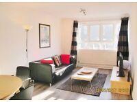 SHORT LET: modern 1 bedroom flat in Chelsea