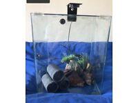 Fish tank 30l cube