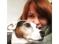 Pet Sitting Service - Reliable and responsible pet sitting & dog walking in Brighton