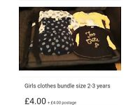 Girls clothes bundle size 2-3 years